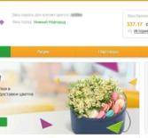 Как в сбербанк онлайн посмотреть бонусы спасибо